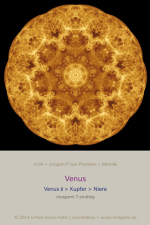 04-Venus-7er