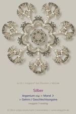 10-Silber-0007er