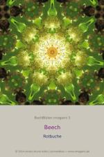 BachBlueten-imagami-03