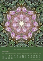 09-imagami-Kalender-2020